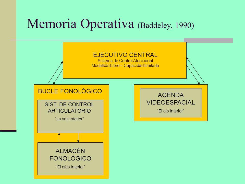 Memoria Operativa (Baddeley, 1990)