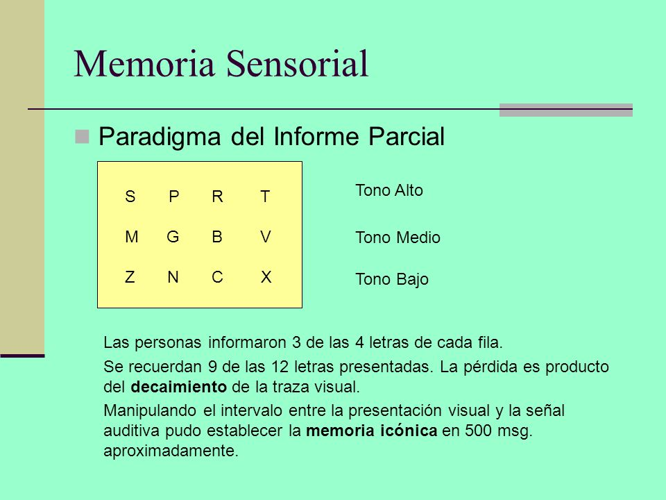 Memoria Sensorial Paradigma del Informe Parcial S P R T M G B V