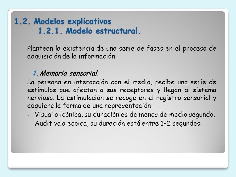1.2. Modelos explicativos 1.2.1. Modelo estructural.