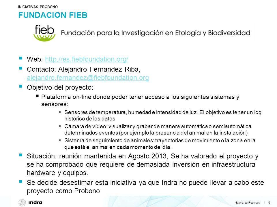 FUNDACION FIEB Web: http://es.fiebfoundation.org/