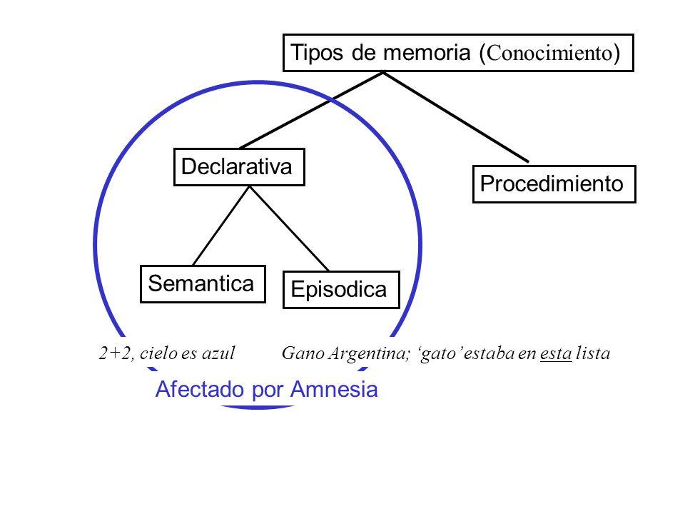 Tipos de memoria (Conocimiento)