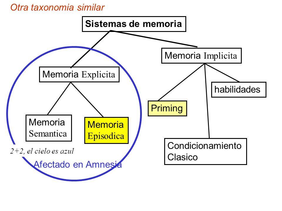 Otra taxonomia similar