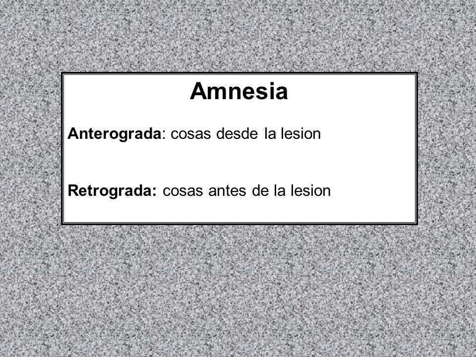 Amnesia Anterograda: cosas desde la lesion