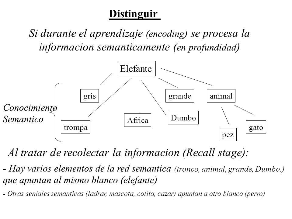 Al tratar de recolectar la informacion (Recall stage):