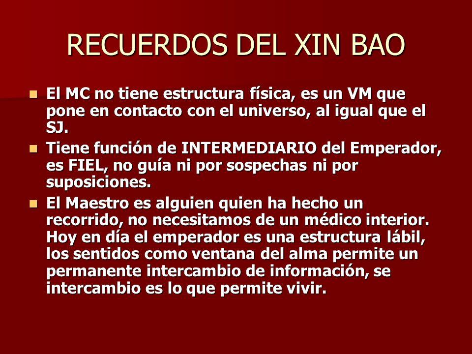 RECUERDOS DEL XIN BAO El MC no tiene estructura física, es un VM que pone en contacto con el universo, al igual que el SJ.