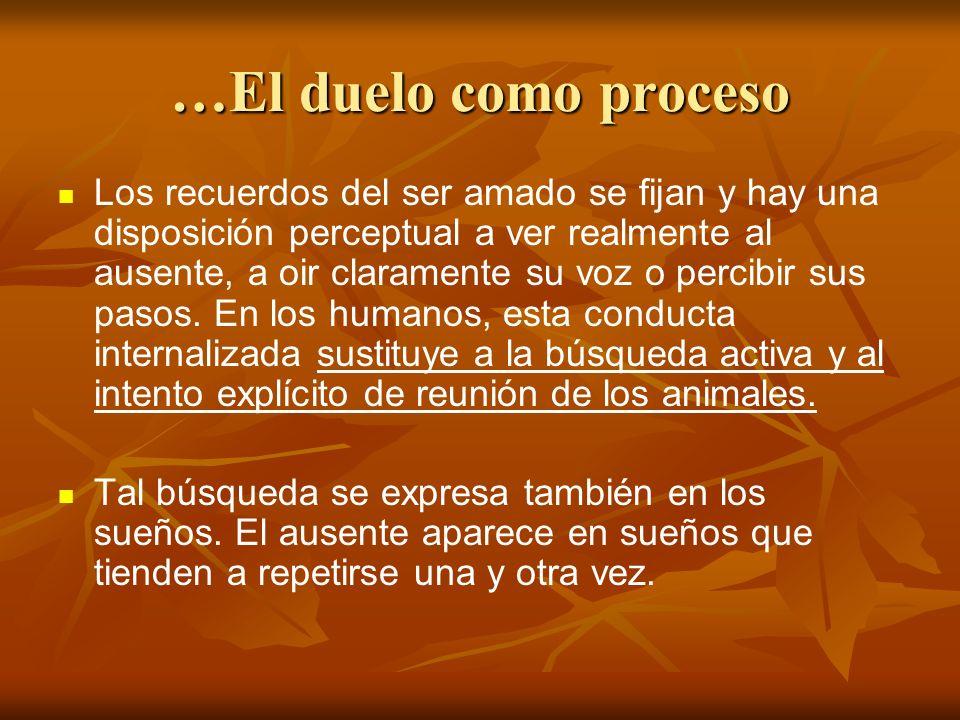 …El duelo como proceso