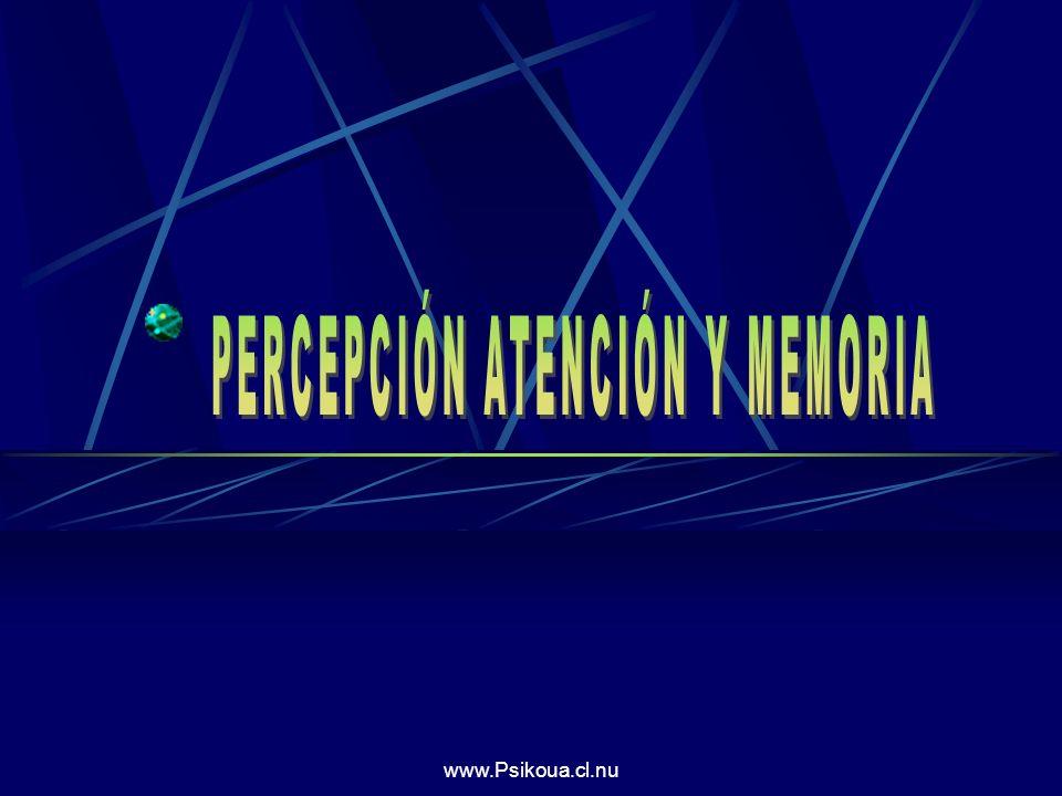 PERCEPCIÓN ATENCIÓN Y MEMORIA