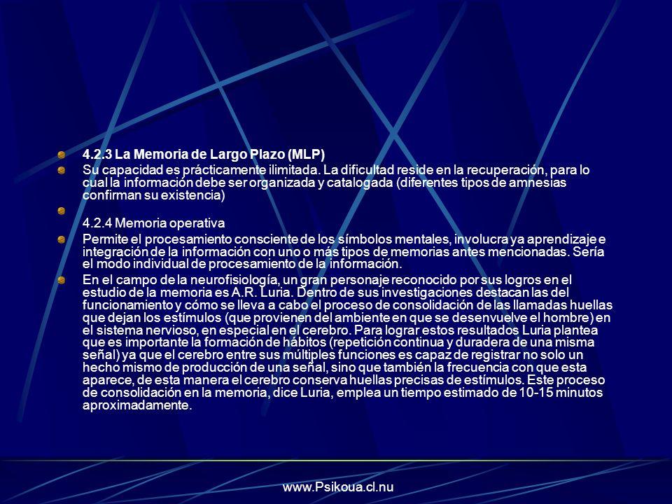 4.2.3 La Memoria de Largo Plazo (MLP)