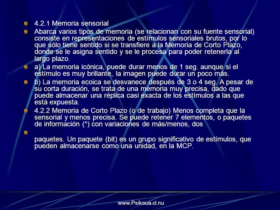 4.2.1 Memoria sensorial