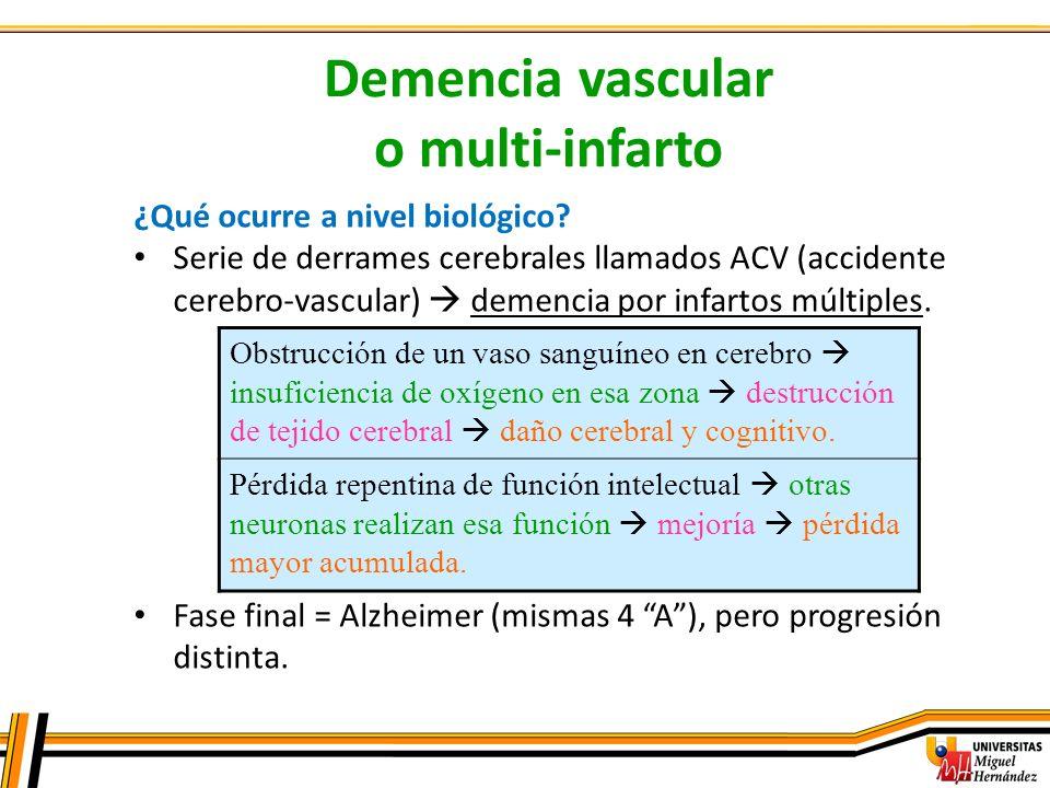 Demencia vascular o multi-infarto