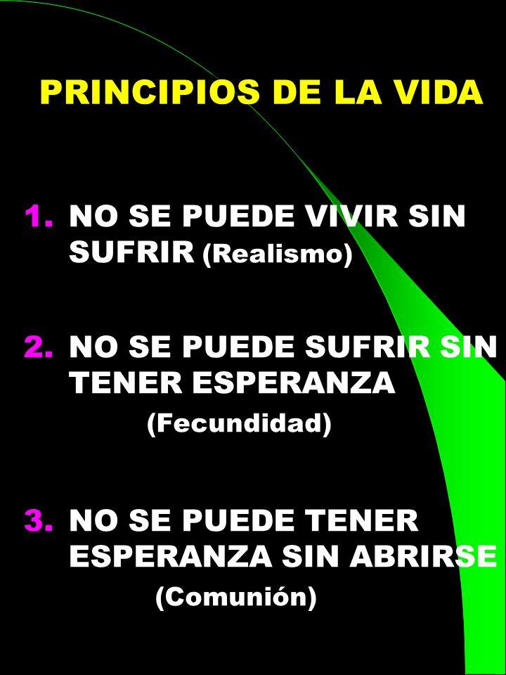 PRINCIPIOS DE LA VIDA NO SE PUEDE VIVIR SIN SUFRIR (Realismo)