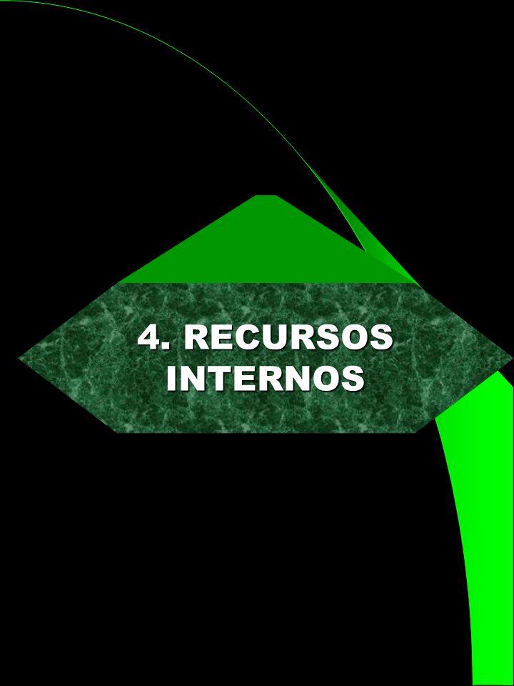 4. RECURSOS INTERNOS