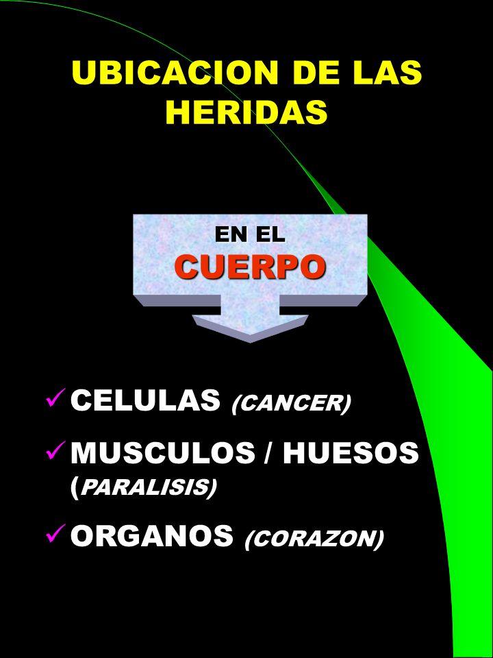 UBICACION DE LAS HERIDAS