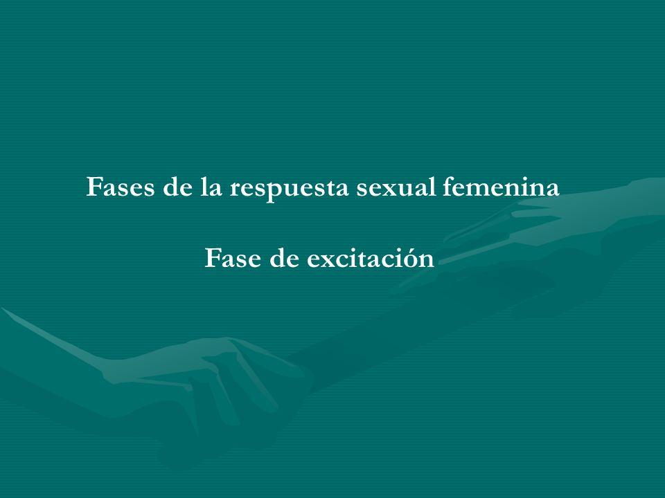Fases de la respuesta sexual femenina