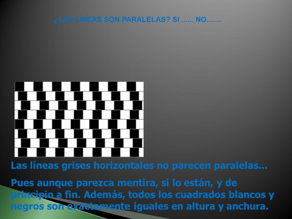 Las líneas grises horizontales no parecen paralelas...