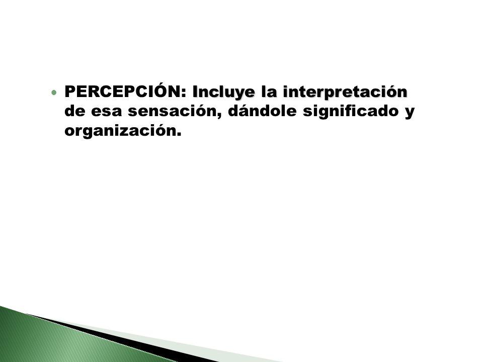 PERCEPCIÓN: Incluye la interpretación de esa sensación, dándole significado y organización.