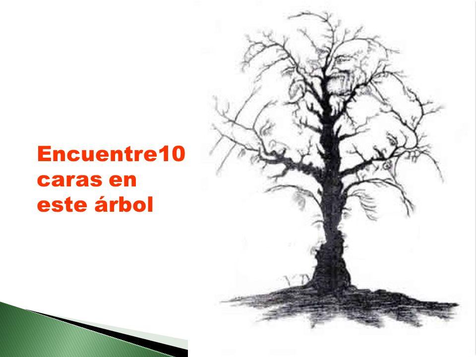 Encuentre10 caras en este árbol