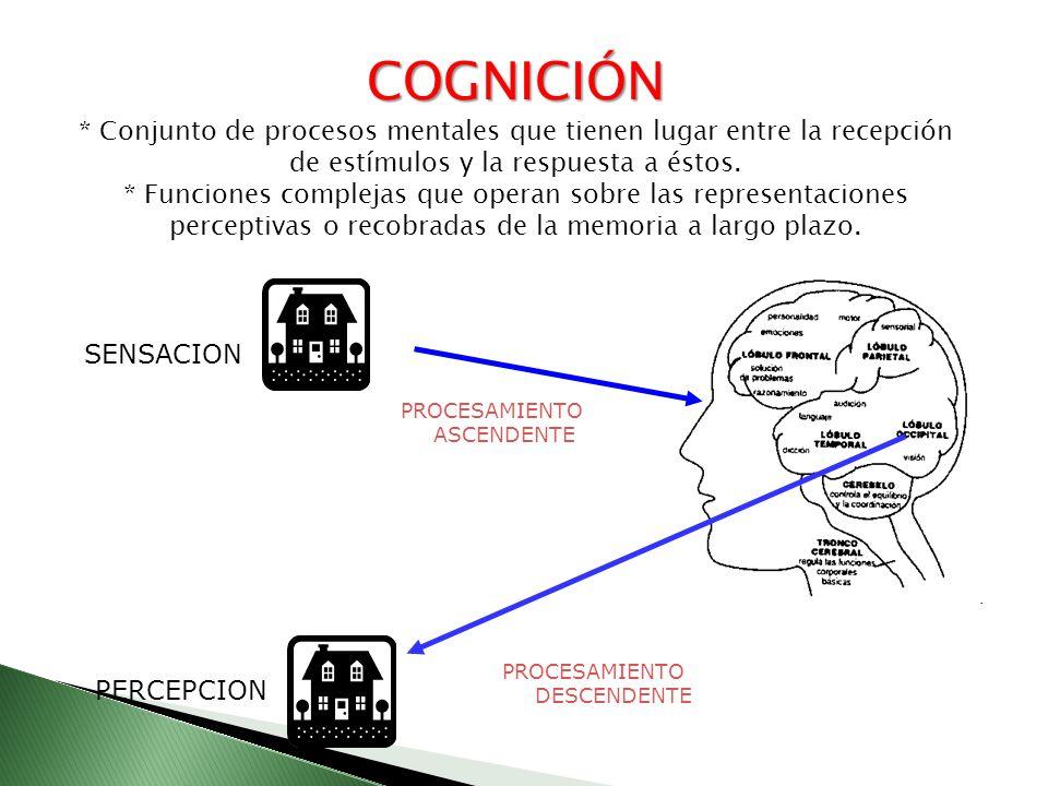 COGNICIÓN * Conjunto de procesos mentales que tienen lugar entre la recepción de estímulos y la respuesta a éstos.