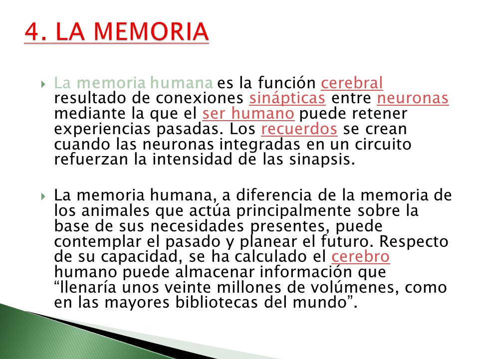 4. LA MEMORIA
