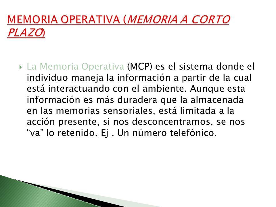 MEMORIA OPERATIVA (MEMORIA A CORTO PLAZO)