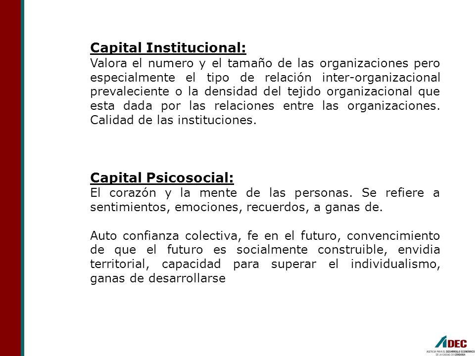 Capital Institucional: