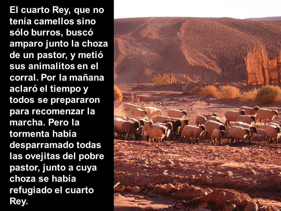 El cuarto Rey, que no tenía camellos sino sólo burros, buscó amparo junto la choza de un pastor, y metió sus animalitos en el corral.