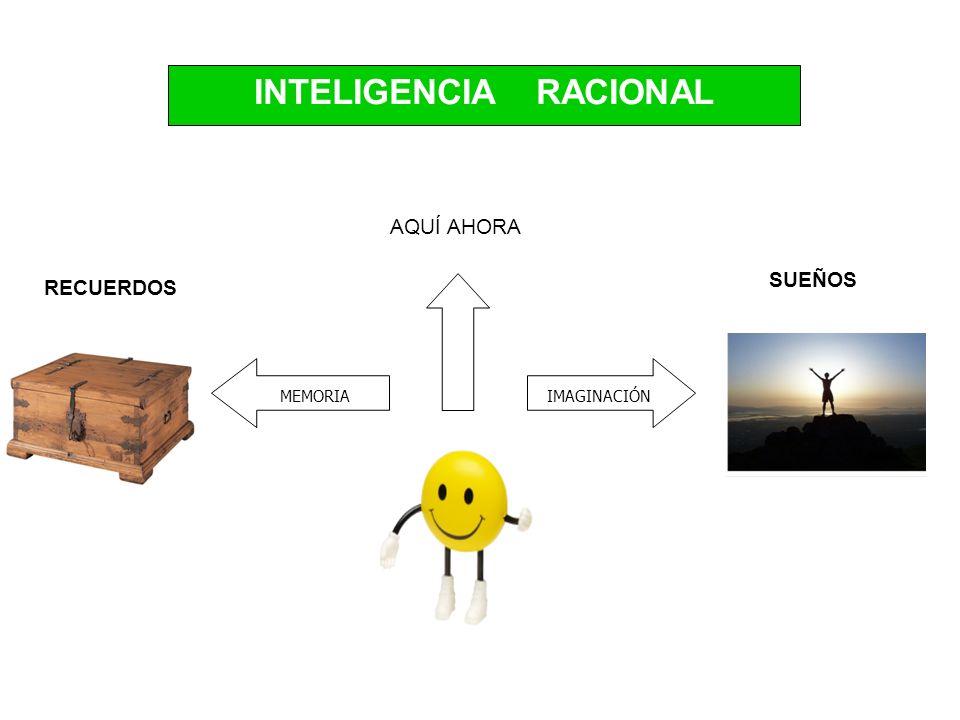 INTELIGENCIA RACIONAL