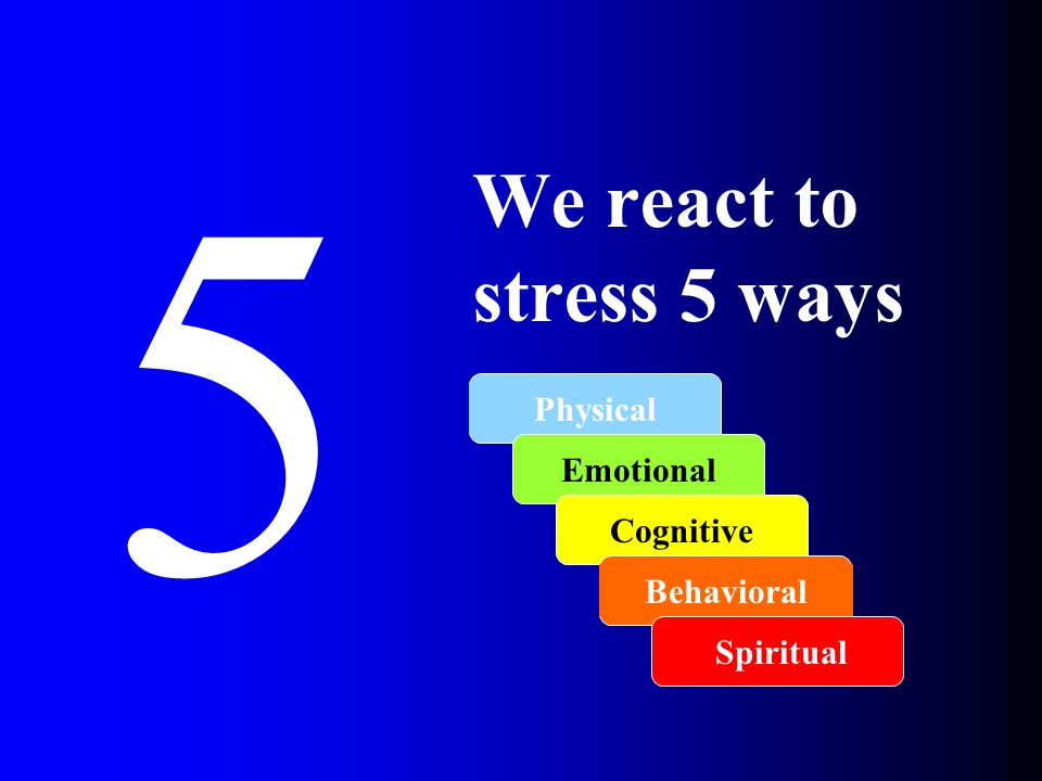 5 We react to stress 5 ways Physical Emotional Cognitive Behavioral