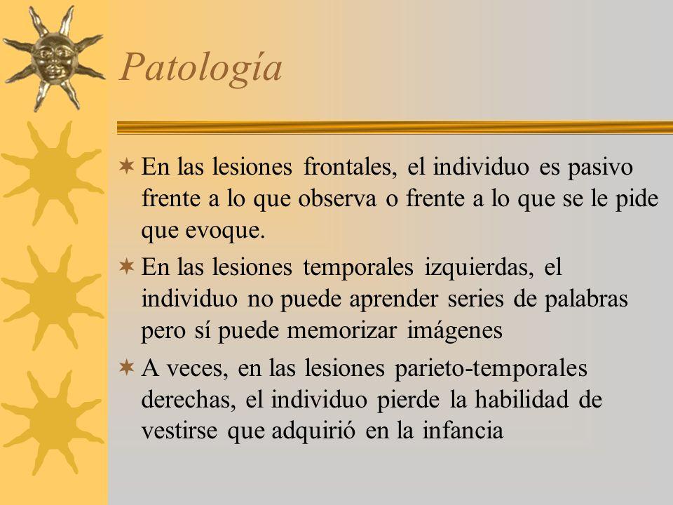 Patología En las lesiones frontales, el individuo es pasivo frente a lo que observa o frente a lo que se le pide que evoque.