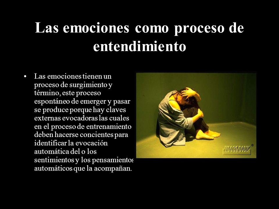 Las emociones como proceso de entendimiento