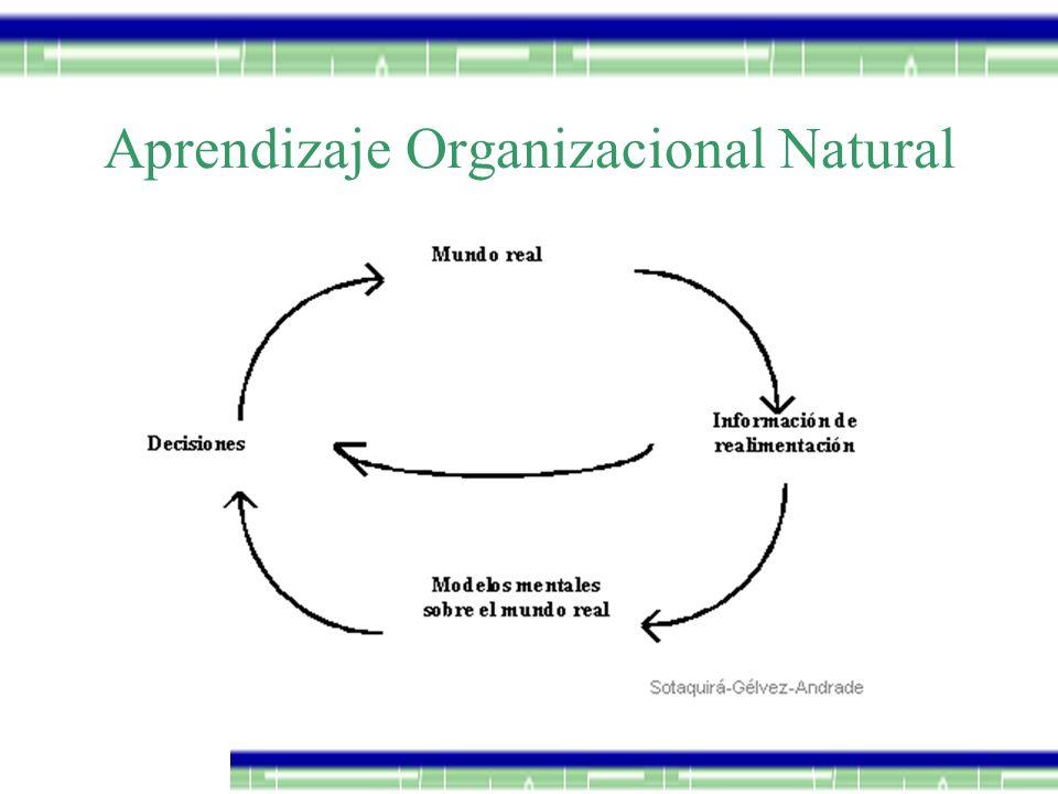 Aprendizaje Organizacional Natural