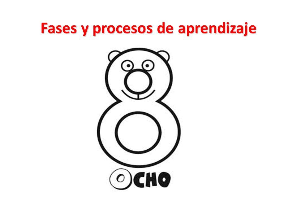 Fases y procesos de aprendizaje