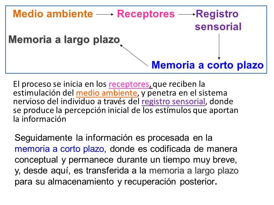 Medio ambiente Receptores Registro sensorial