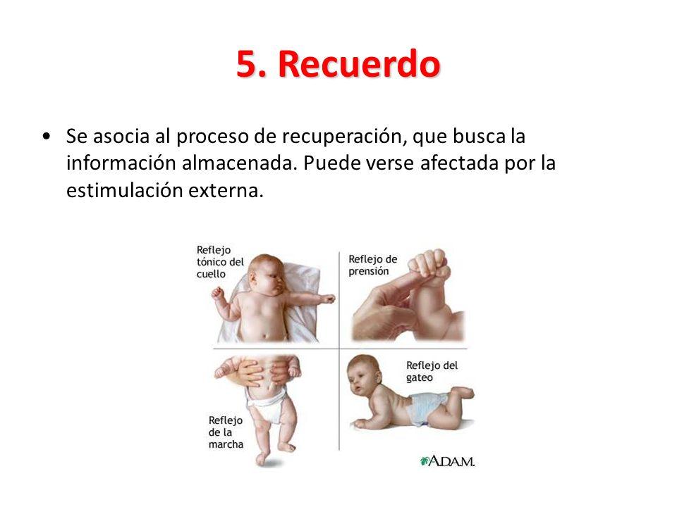 5. Recuerdo Se asocia al proceso de recuperación, que busca la información almacenada.