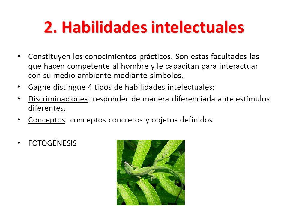 2. Habilidades intelectuales