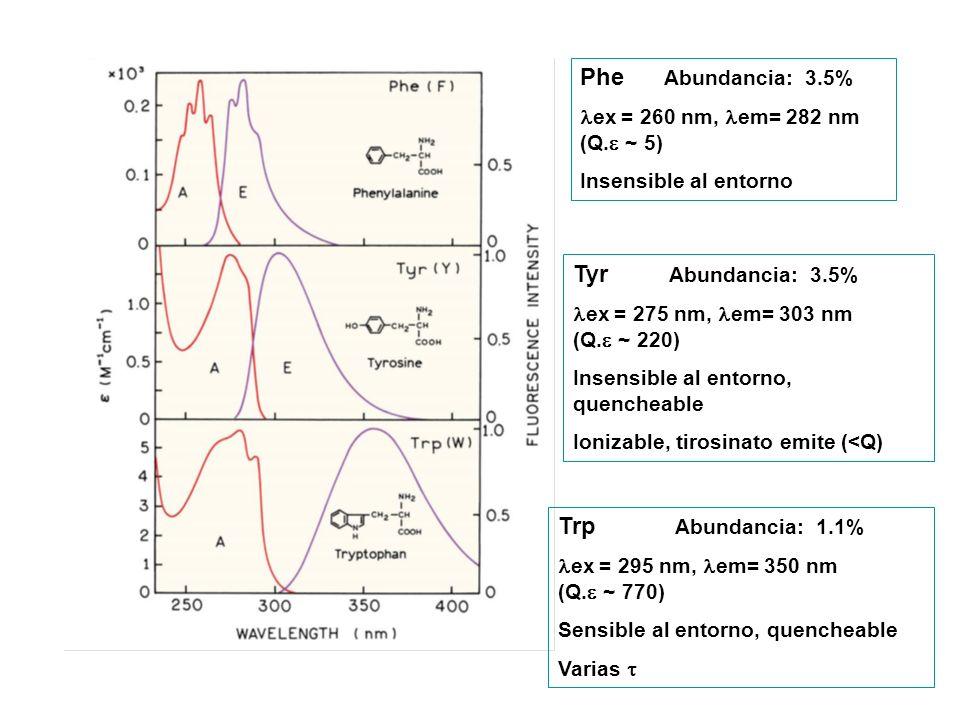 Phe Abundancia: 3.5% Tyr Abundancia: 3.5% Trp Abundancia: 1.1%