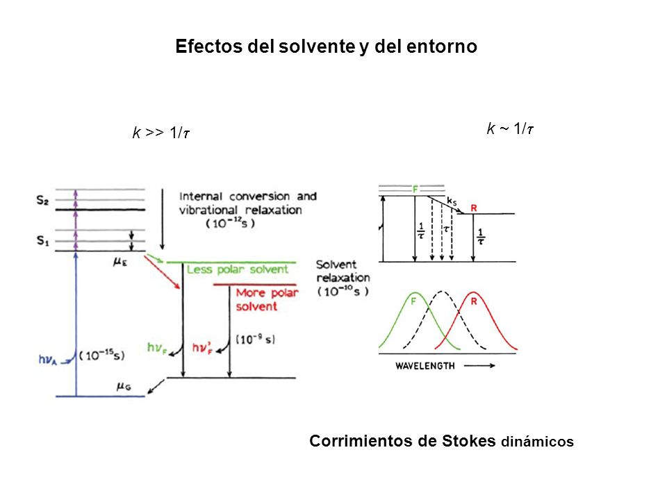 Efectos del solvente y del entorno