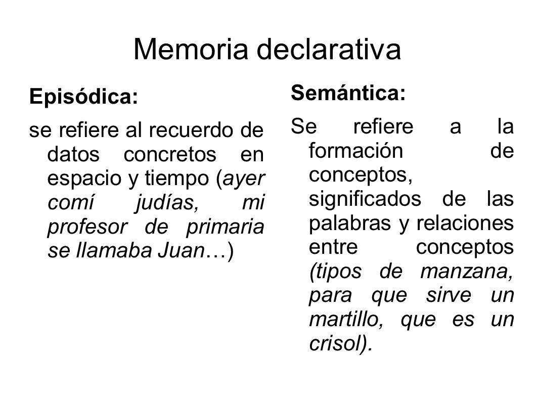 Memoria declarativa Semántica: Episódica: