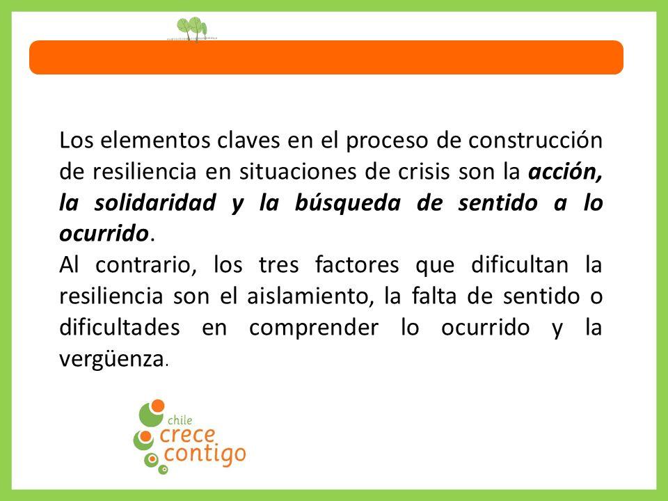 Los elementos claves en el proceso de construcción de resiliencia en situaciones de crisis son la acción, la solidaridad y la búsqueda de sentido a lo ocurrido.