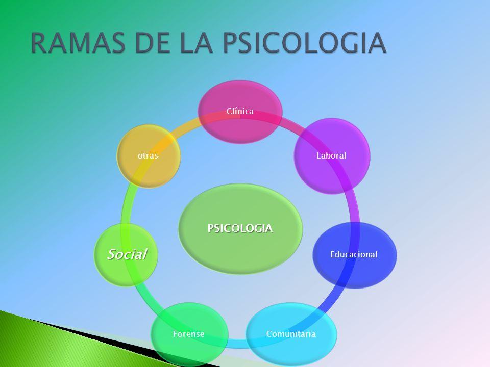RAMAS DE LA PSICOLOGIA Social PSICOLOGIA Clínica Laboral Educacional