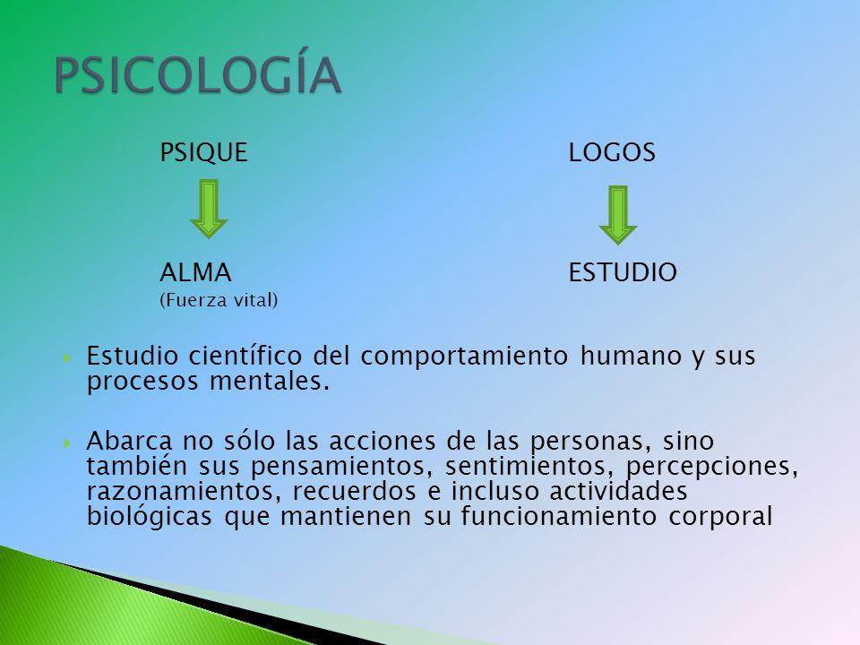 PSICOLOGÍA PSIQUE LOGOS ALMA ESTUDIO