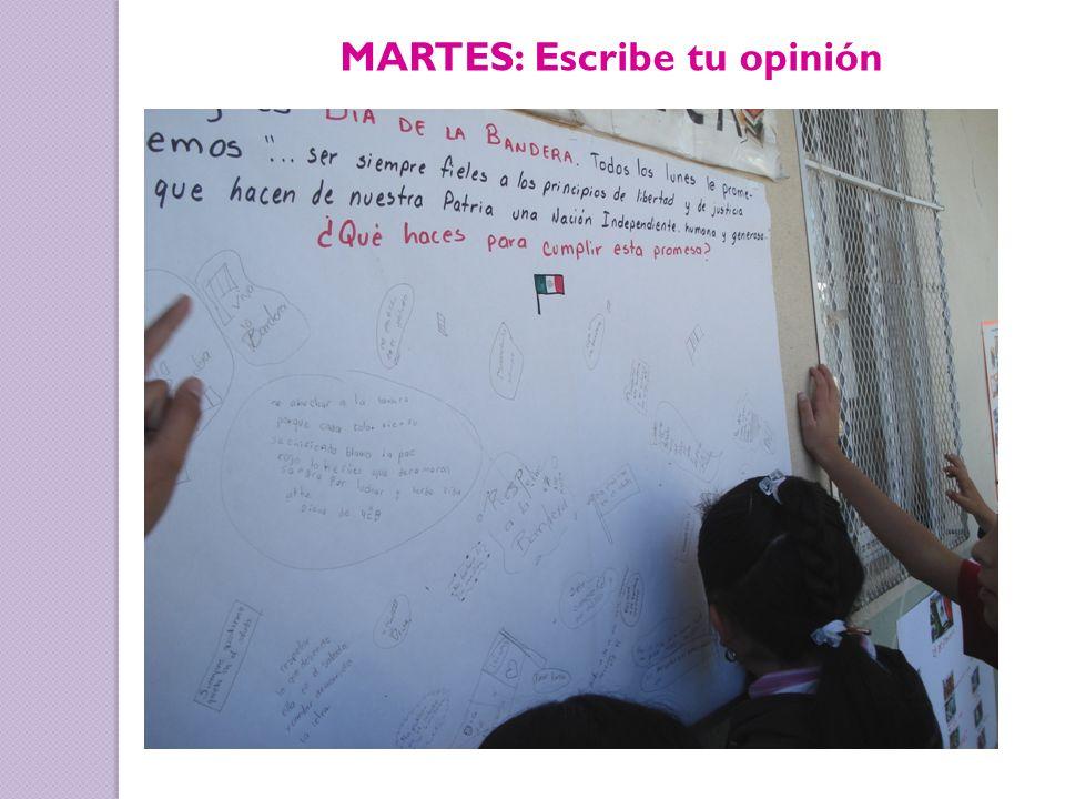MARTES: Escribe tu opinión
