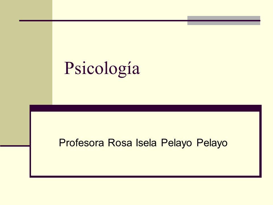 Profesora Rosa Isela Pelayo Pelayo