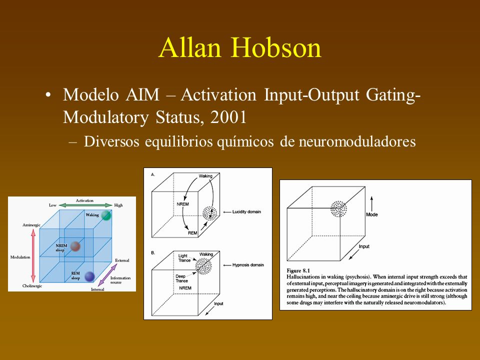 Allan Hobson Modelo AIM – Activation Input-Output Gating-Modulatory Status, 2001.