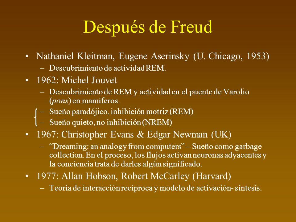 Después de Freud Nathaniel Kleitman, Eugene Aserinsky (U. Chicago, 1953) Descubrimiento de actividad REM.