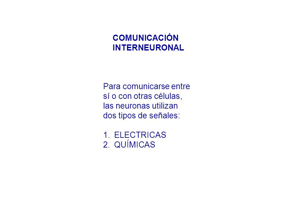 COMUNICACIÓN INTERNEURONAL. Para comunicarse entre. sí o con otras células, las neuronas utilizan.