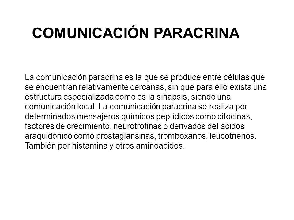 COMUNICACIÓN PARACRINA