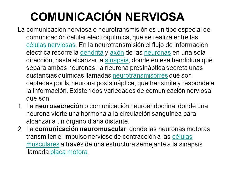 COMUNICACIÓN NERVIOSA