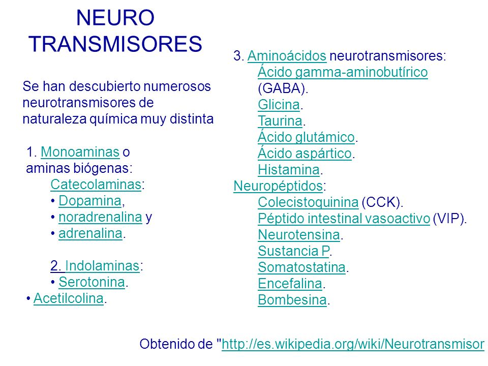 NEURO TRANSMISORES 3. Aminoácidos neurotransmisores: