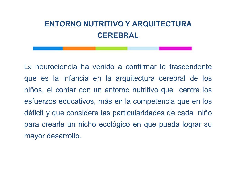 ENTORNO NUTRITIVO Y ARQUITECTURA CEREBRAL